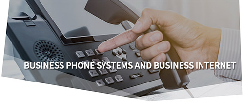NEWT - Business Phone Systems and Business Internet
